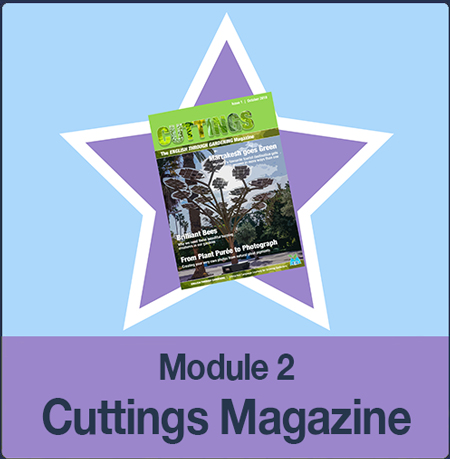 m2-cuttings