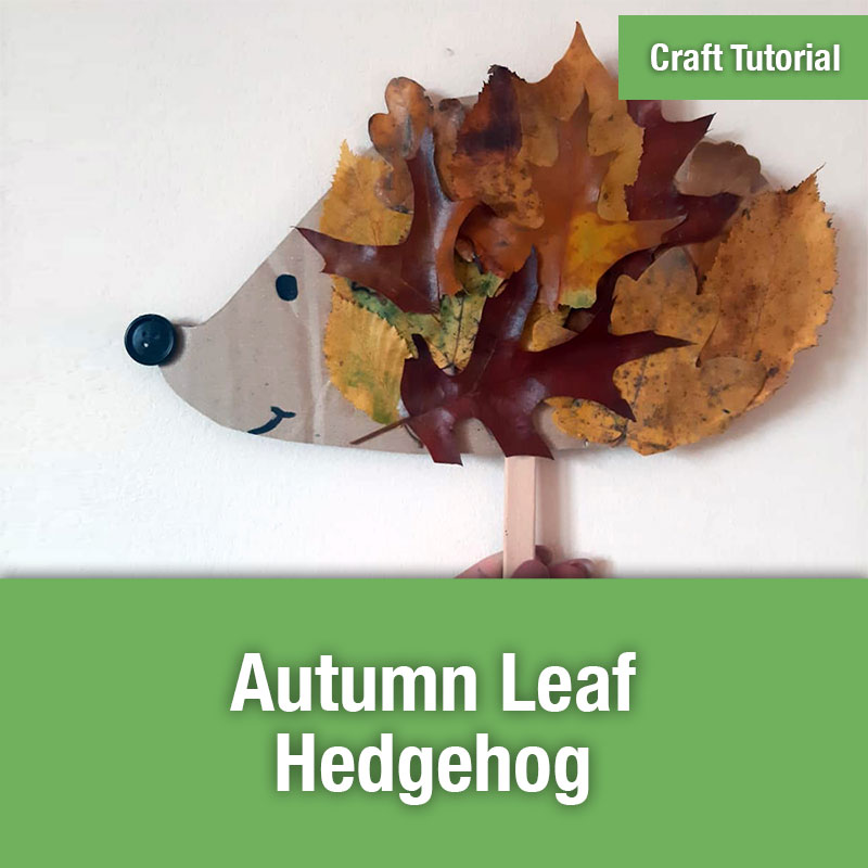 ETG Craft Tutorial | Autumn Leaf Hedgehog