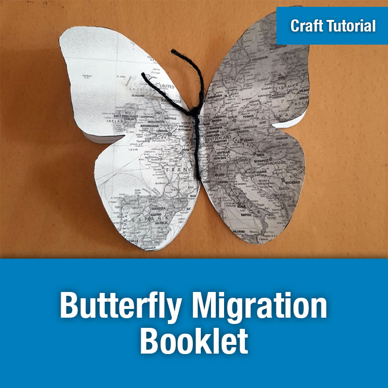 ETG Craft Tutorial | Butterfly Migration Booklet