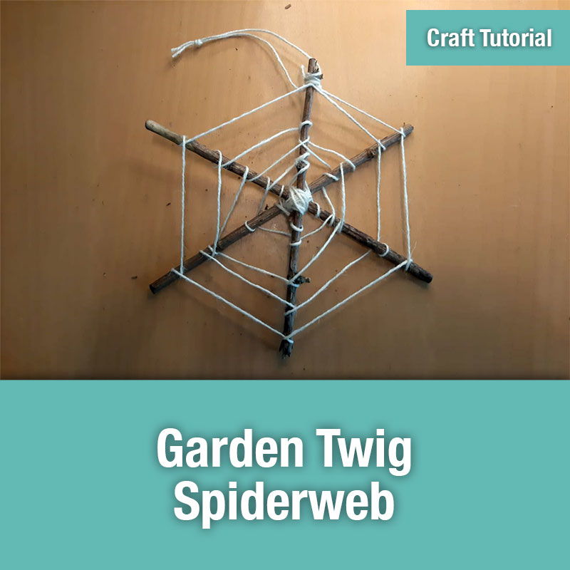 ETG Craft Tutorial | Garden Twig Spiderweb