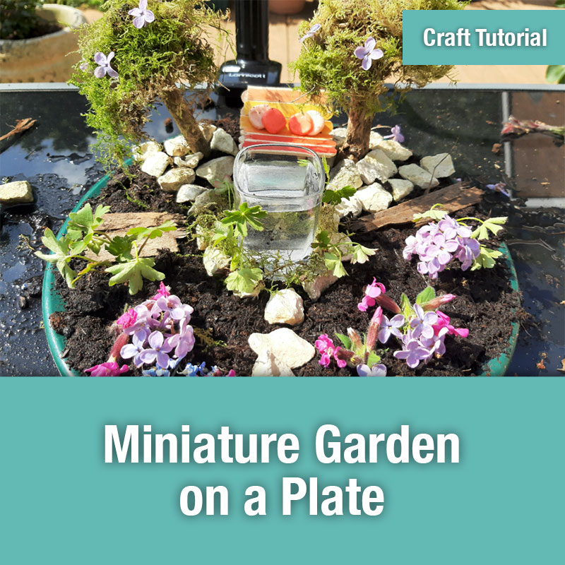 ETG Craft Tutorial | Miniature Garden on a Plate