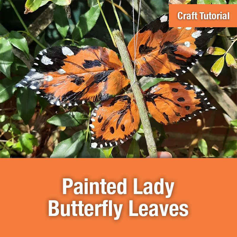 ETG Craft Tutorial | Painted Lady Butterfly Leaves