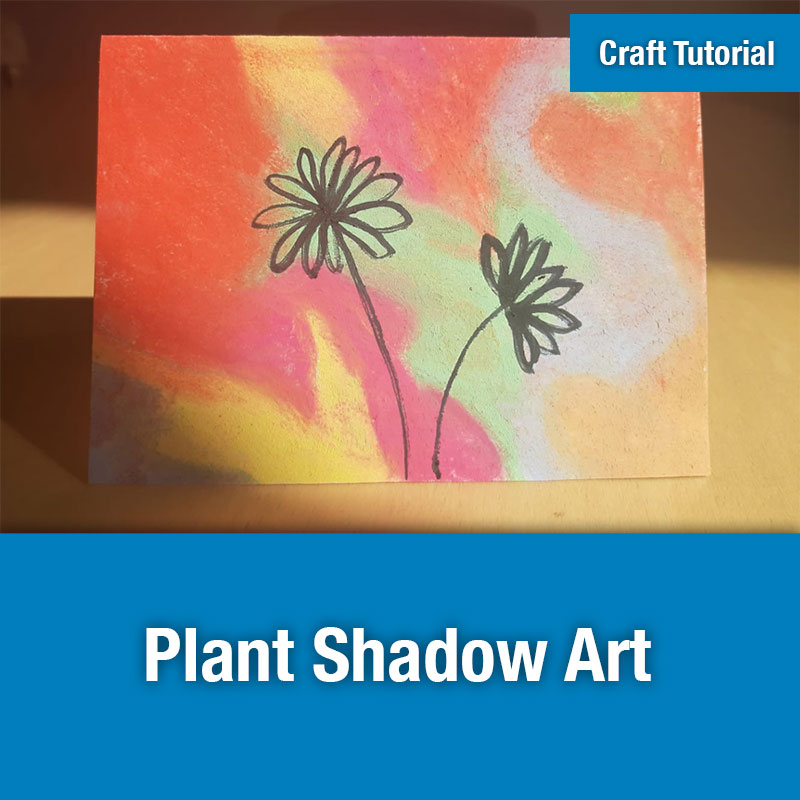 ETG Craft Tutorial | Plant Shadow Art