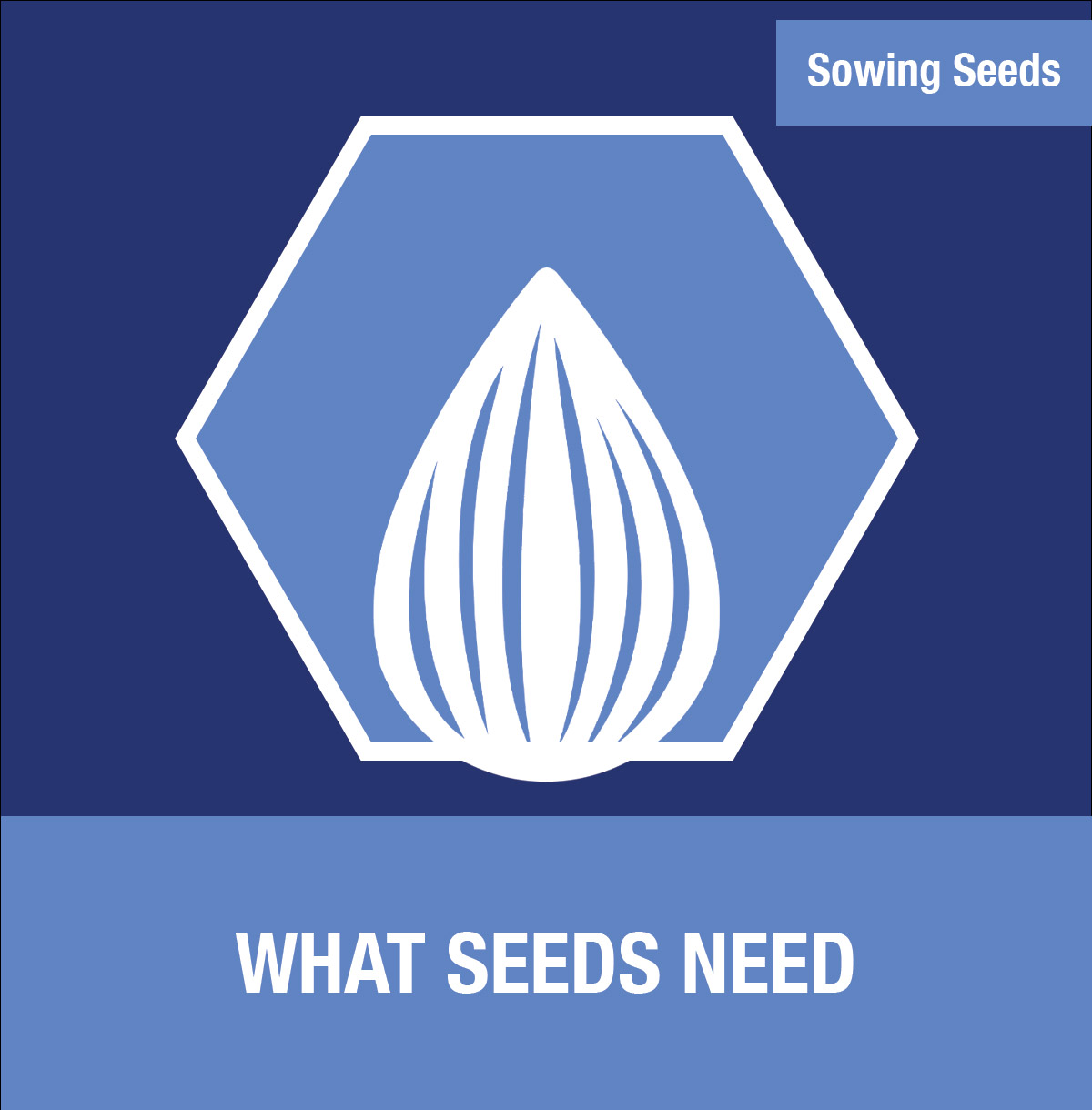 Sowing Seeds: What Seeds Need