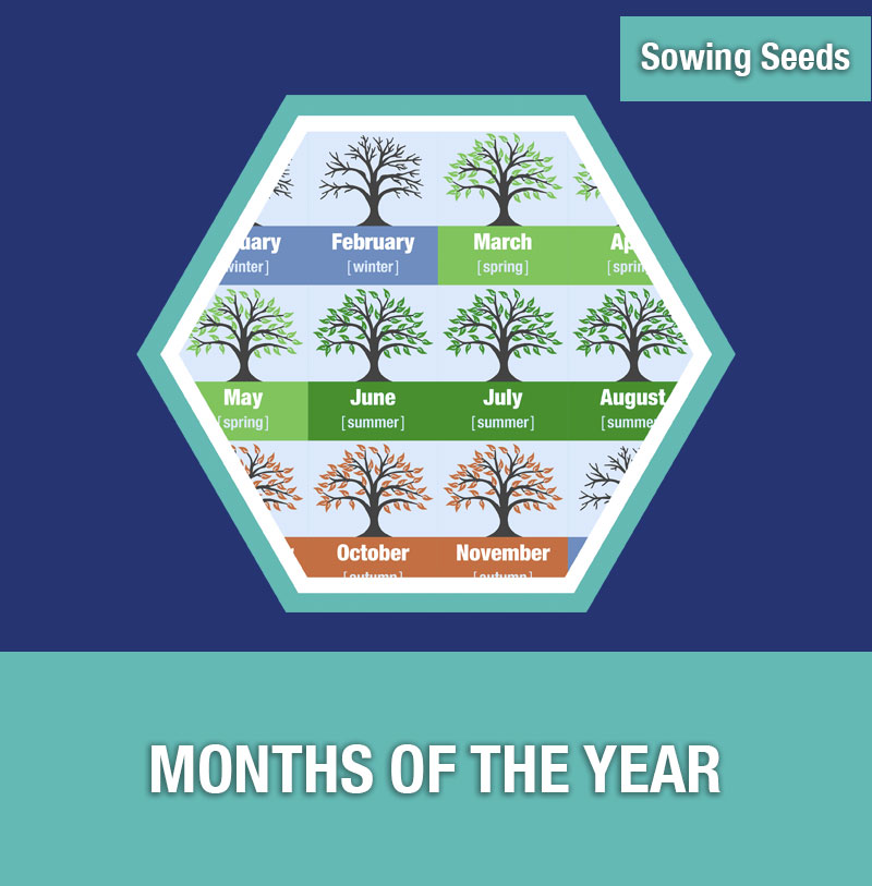 Sowing Seeds: Months of the Year