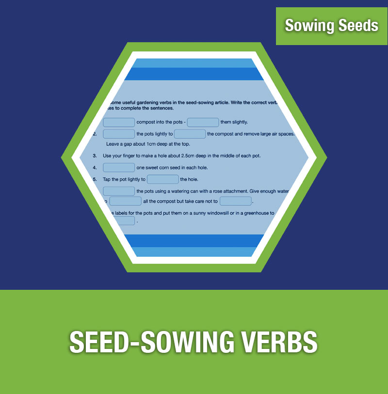 Sowing Seeds: Seed-Sowing Verbs