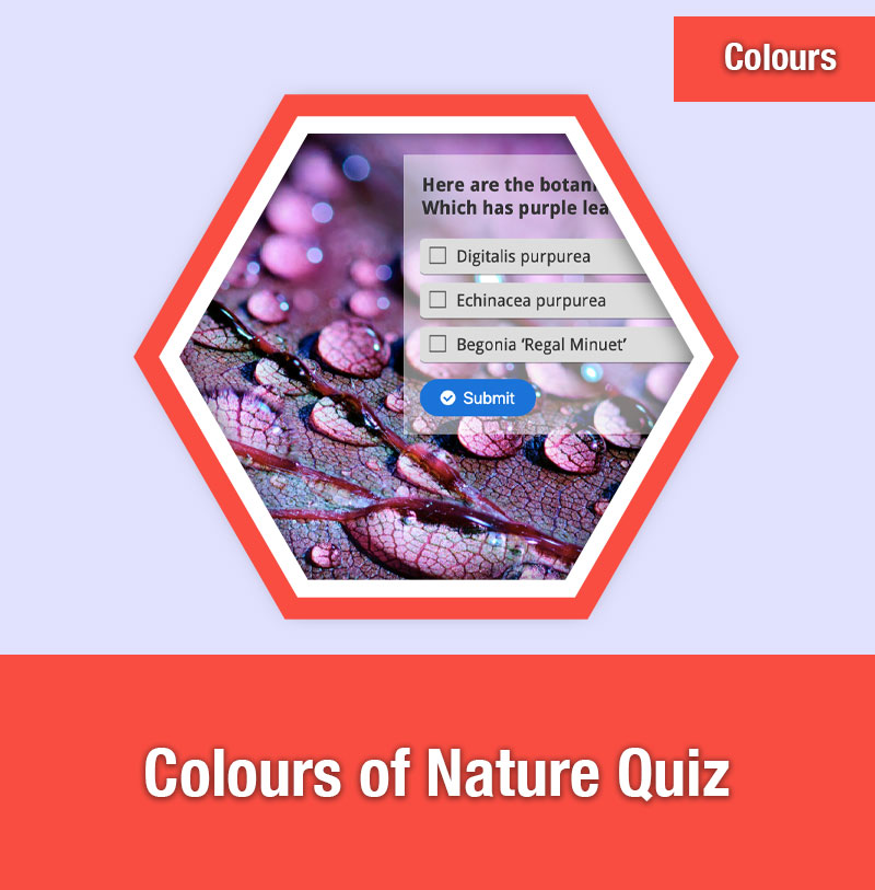 Colours of Nature Quiz | COL-1A | IMAGE PREVIEW