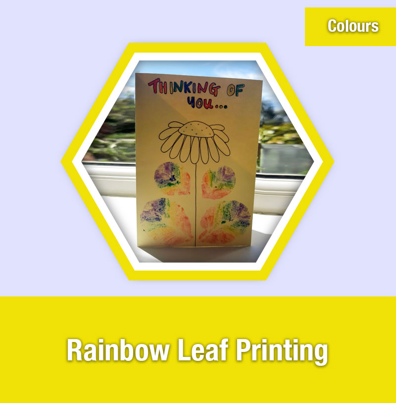 Rainbow Leaf Printing | COL-1C | IMAGE PREVIEW