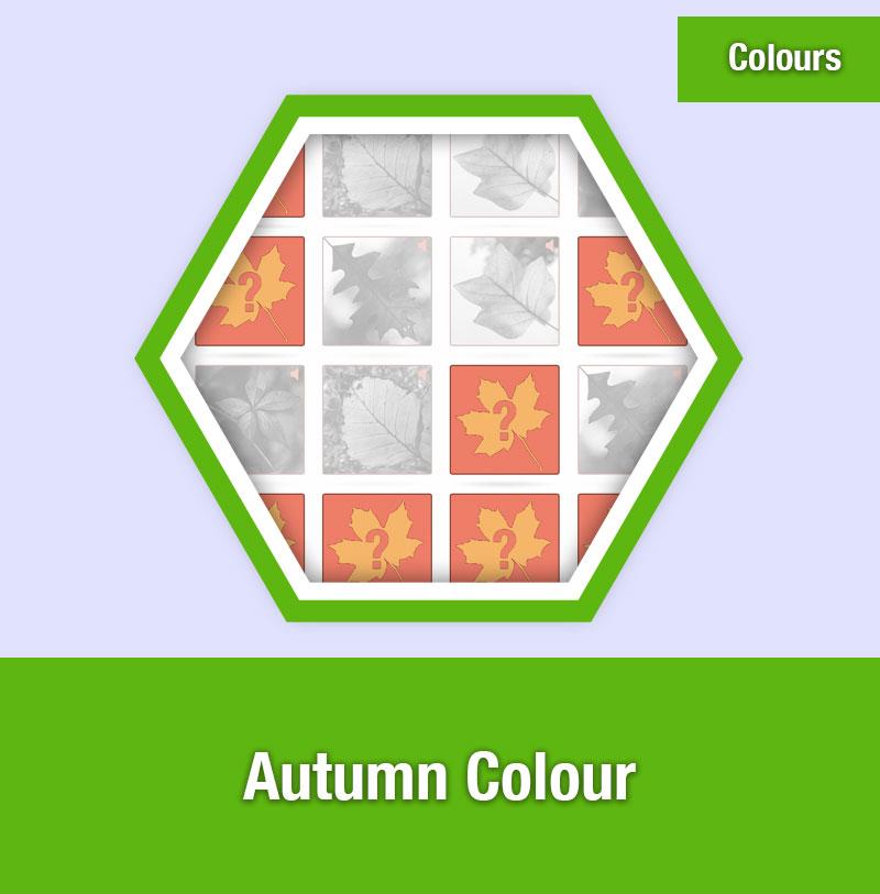Autumn Colour | COL-1D | IMAGE PREVIEW