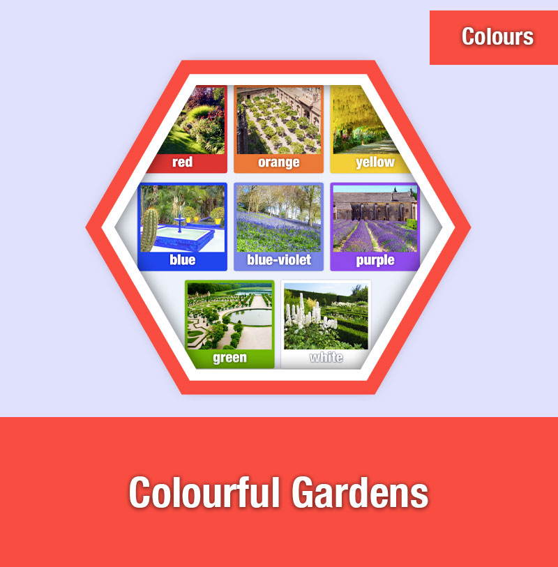 Colourful Gardens | COL-4A | IMAGE PREVIEW
