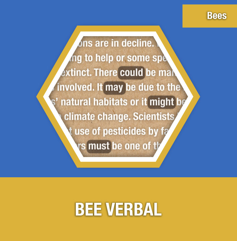 BEE-1C Bee Verbal | Image Preview