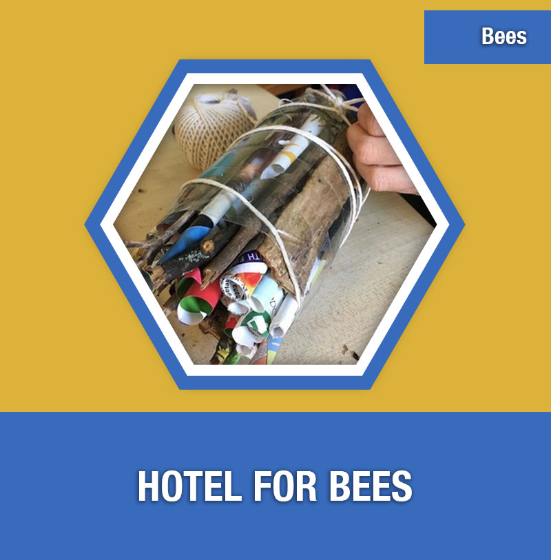 BEE-1D Hotel for Bees | Image Preview
