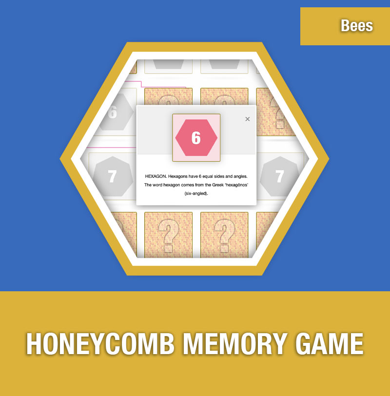 BEE-5D Honeycomb Memory Game | Image Preview