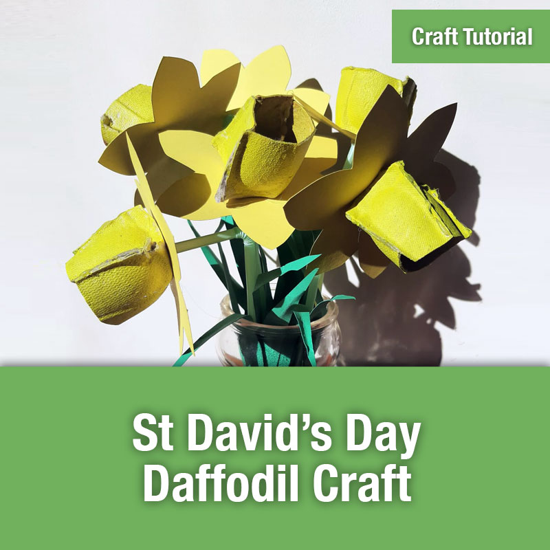 St David's Day Craft IMAGE PREVIEW