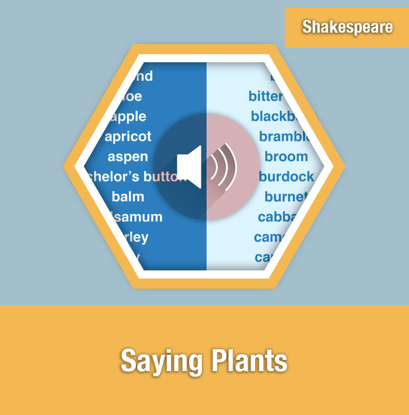 Saying Plants | IMAGE PREVIEW