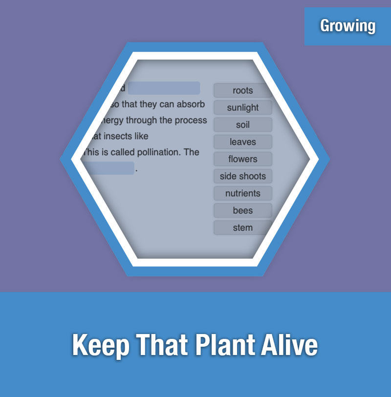 ETG Keep That Plant Alive | IMAGE PREVIEW