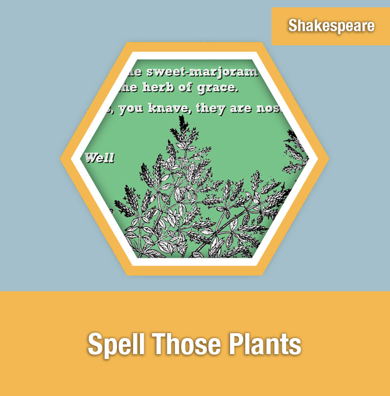 Spell Those Plants | IMAGE PREVIEW