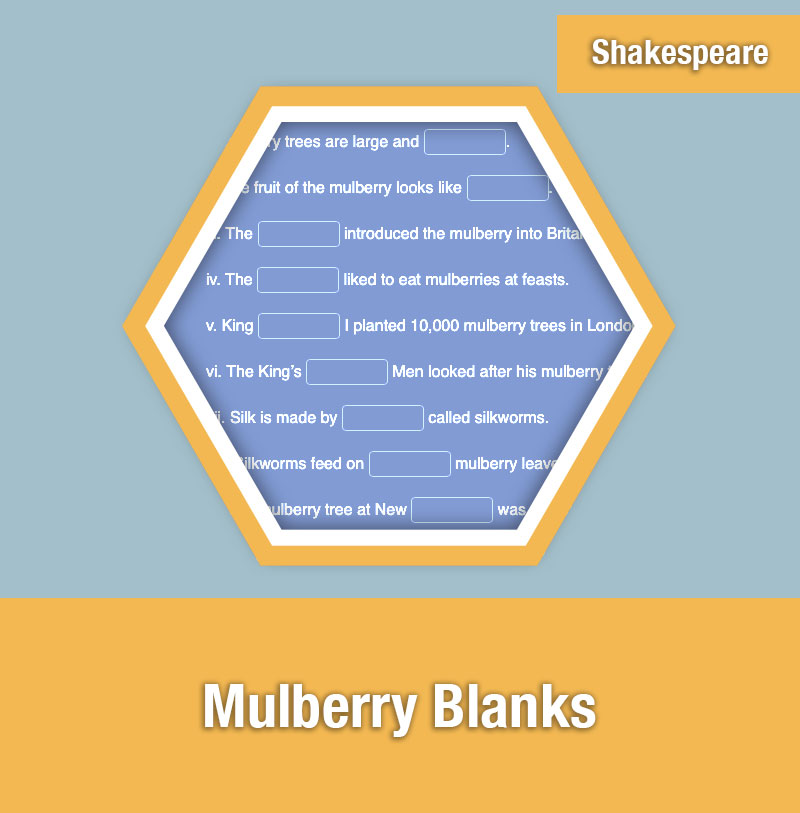 Mulberry Blanks | IMAGE PREVIEW