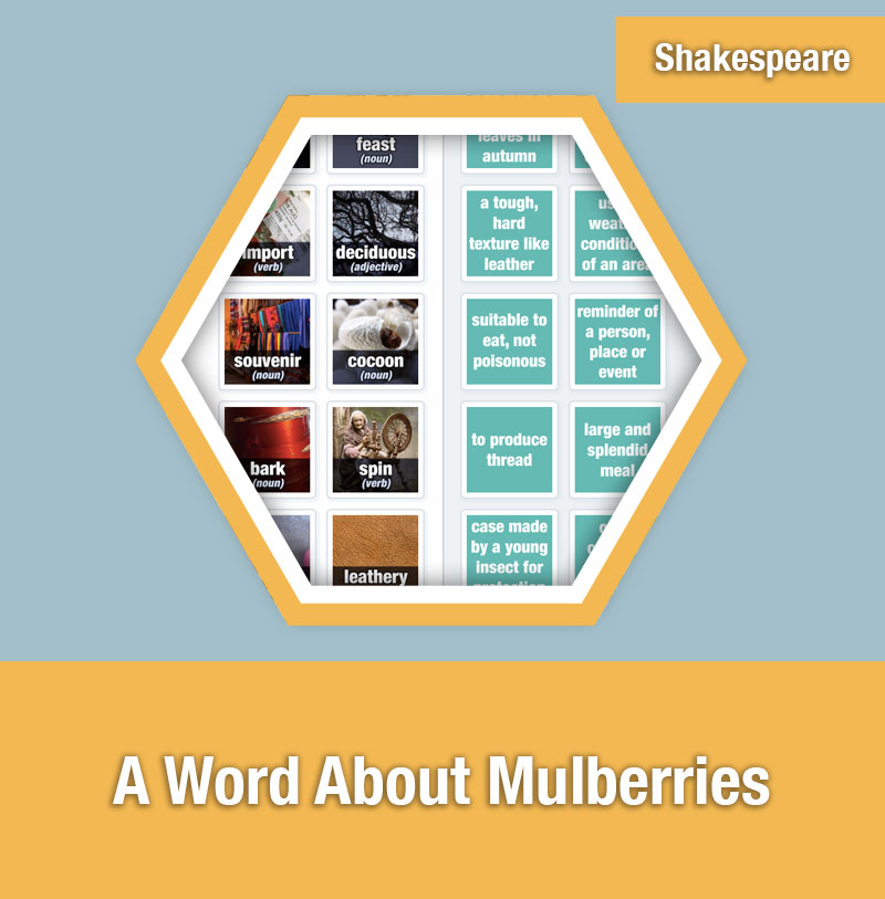 A Word About Mulberries | IMAGE PREVIEW