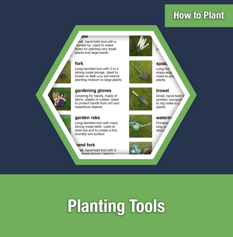 HOW TO PLANT   Planting Tools