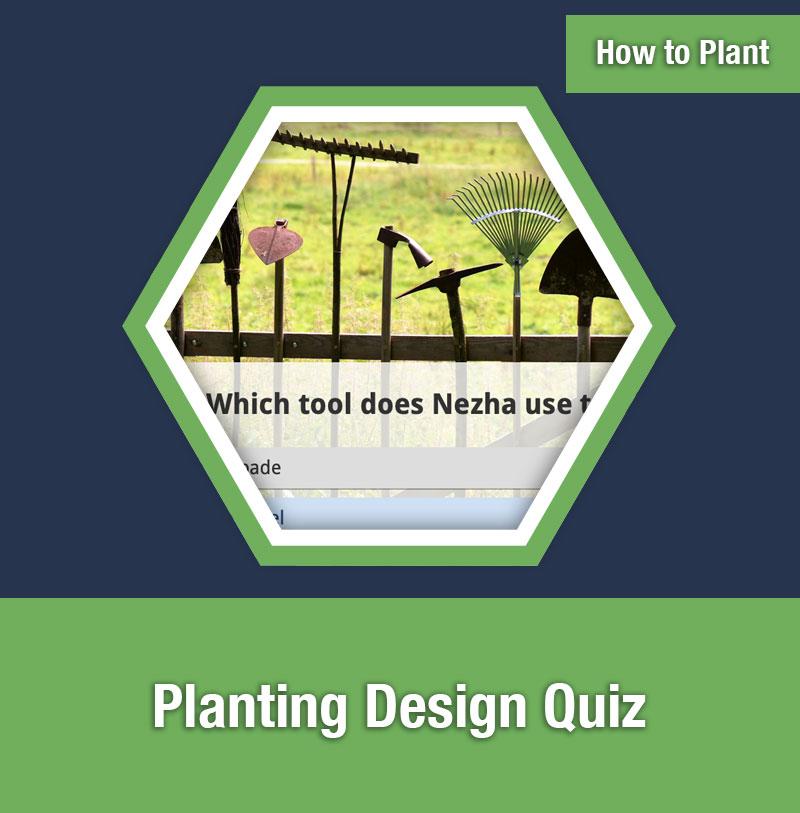 HOW TO PLANT   Planting Design Quiz