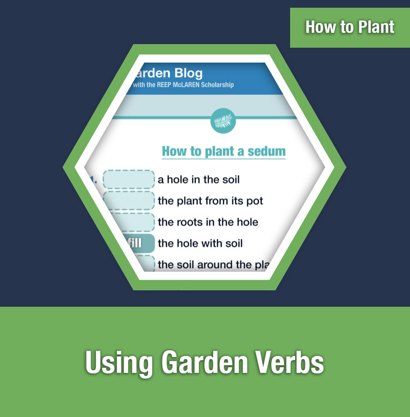 HOW TO PLANT   Using Garden Verbs