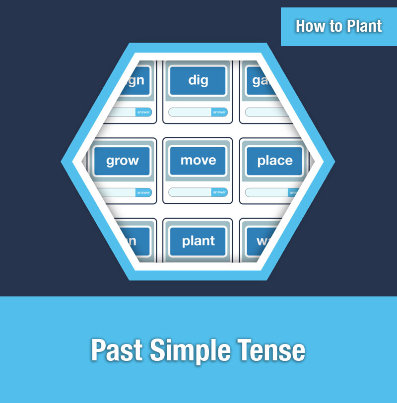 HOW TO PLANT   Past Simple Tense