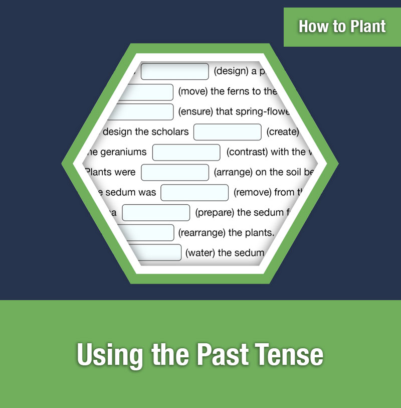 HOW TO PLANT   Using the Past Tense