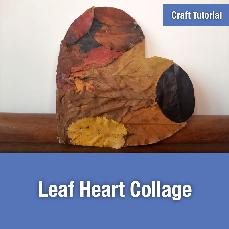 Leaf Heart Collage | IMAGE PREVIEW